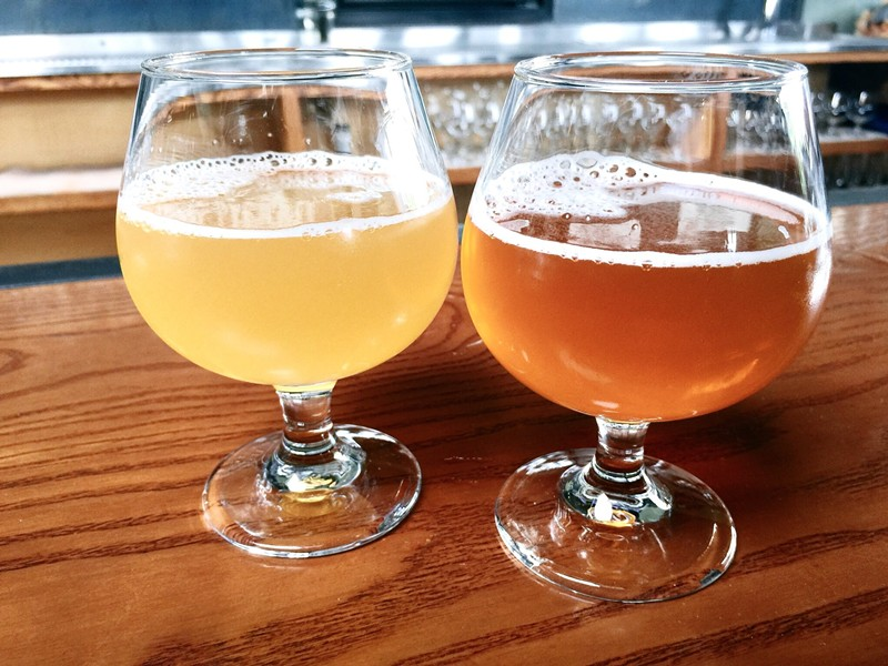 These are two of the first-ever beers produced by Temescal Brewing, which debuted at Hog's last year. - PHOTO BY NICK MILLER