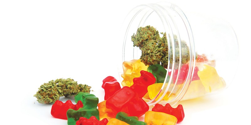 SWEET SURPRISE: Studies have found that no one is giving away expensive cannabis edibles to kids on Halloween.