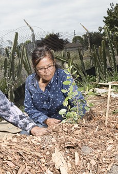 Diane Williams plants with Johnella LaRose at a miniature rendering of a traditional Ohlone dance arbor on 105th Avenue in Oakland.