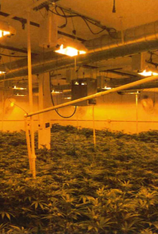 The city red-tagged the illegal cannabis grow at 1170 Hensley Street, but it continued to operate.