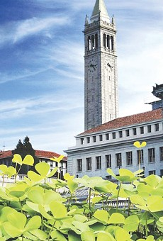WHERE IT ALL BEGAN: The UC Berkeley campus has always been a hotspot in the fight for social justice.