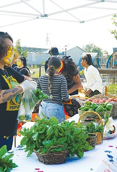 ORGANIC COMPASSION:  Farmers to Families now serves nearly 200 households.