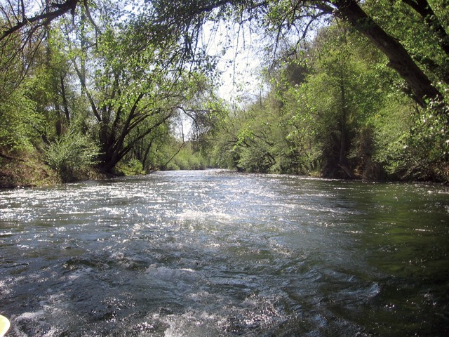 The state is recommending protection for 37 miles of the Mokelumne River. - FILE PHOTO BY ROBERT GAMMON