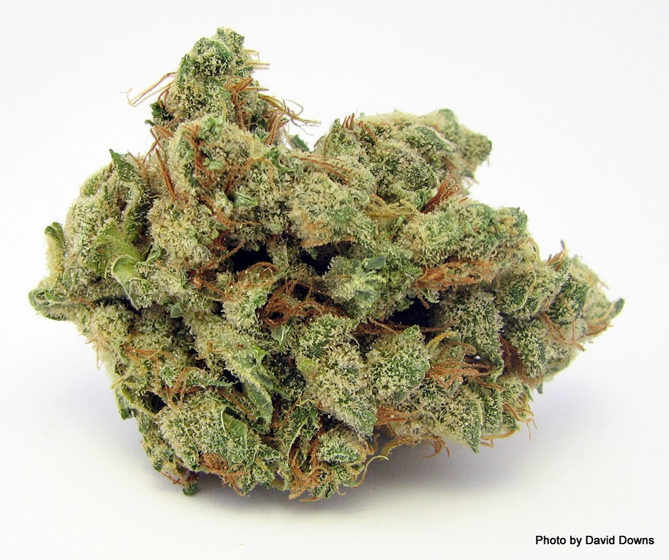marijuana could lose its federal 39 most dangerous drug. Black Bedroom Furniture Sets. Home Design Ideas