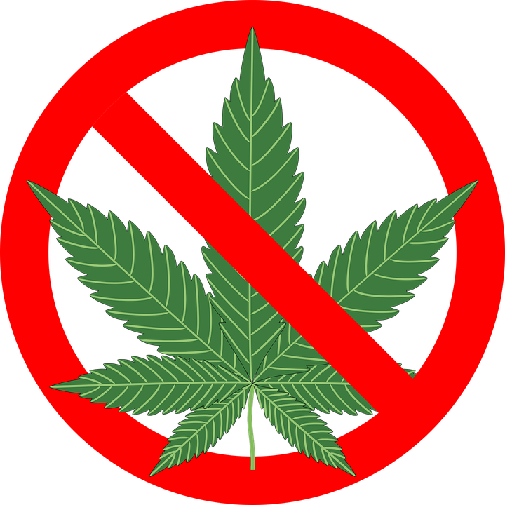 Image result for no marijuana