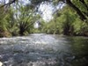 The state is recommending protection for 37 miles of the Mokelumne River.