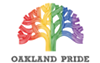 Bay Area Celebrates Historic Marriage Equality Ruling