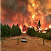 Fire-Ravaged Californians Get Help From Magnolia Wellness and Bloom Farms (2)