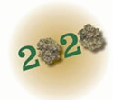 What Will 2020 Mean for Cannabis?