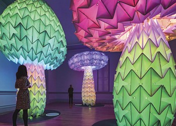 Burning Man Fires Up the Oakland Museum