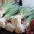 How to Survive the Slow Season at East Bay Farmers' Markets