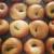 Alameda's Boichik Bagels is a Game-Changer