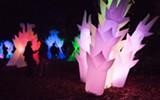 "MARCO SANCHEZ - Stan Clark's ""Astro Botanicals"" will light up The Gardens at Lake Merritt again this year."