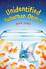 9f643495_unidentified_suburban_object.jpg