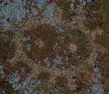 12c284c6_petro.jpg