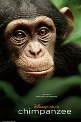 f941b6a2_chimpanzeeposter.jpg