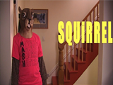 4687c4f7_squirreltitle.png