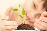 8e351f2b_plant_a_flower_pic.jpg