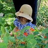 b1362ecd_0_freya_crop_garden_square_calendar.jpg