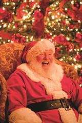 fd233bf5_holiday_santa_479234_high.jpg
