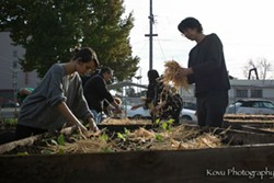 Volunteers plant vegetables during the first Afrika Town work day in November. - KOVU PHOTOGRAPHY