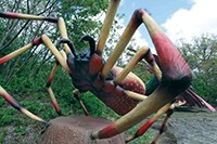e_a_pick_art_Nephila_credit_Dinosaurs_Unearthed.jpg