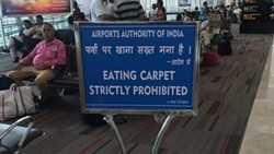 Caption don't eat the carpet. This image has a URL. - THIS IS CREDIT