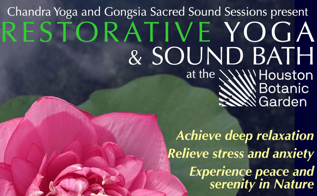 Restorative Yoga & Sound Bath | Sun Nov. 7 @ 2p