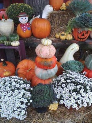 A fall display at The Apple Barn in Chatham.