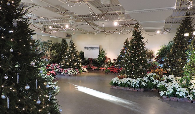 Christmas Tree Collection Springfield Illinois 2020 Holiday events calendar