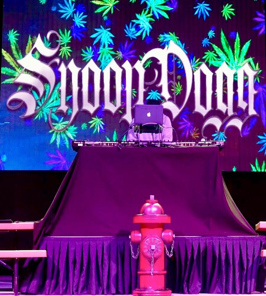 The stage at the Snoop Dogg concert - BRIAN BOWLES