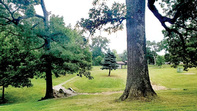 The Springfield Park District is seeking community input on whether Douglas Park should be renamed to honor abolitionist Frederick Douglass instead of Stephen Douglas, whose statue is slated to be removed from the Illinois Capitol lawn due to his connections to slavery. - PHOTO BY RACHEL OTWELL