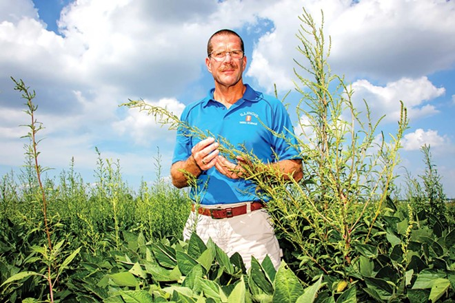 Aaron Hager, University of Illinois weed scientist, recommends pulling weeds when feasible and says that herbicides alone won't work in the long term. - PHOTO BY L. BRIAN STAUFFER AND COURTESY OF UNIVERSITY OF ILLINOIS.