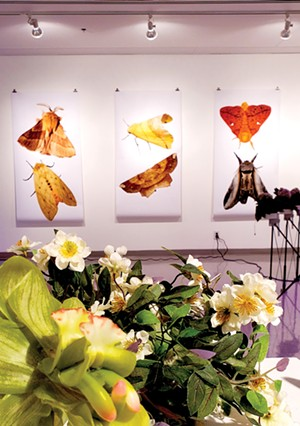 The exhibit features fantastical plants, brought to life by the viewer. - PHOTO BY RACHEL OTWELL