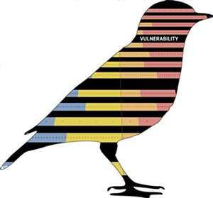 black-bird-silhouette.jpg