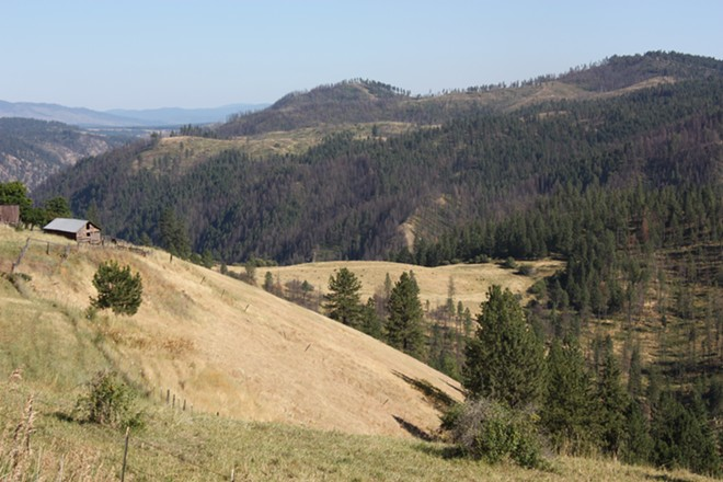 A view from the top of Greer Grade.