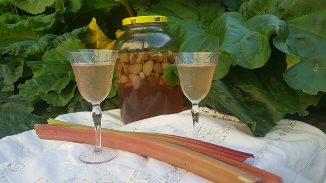 Grandma would appreciate this rhubarb cordial served in traditional glasses like these. A little goes a long way. - ELAINE WILLIAMS