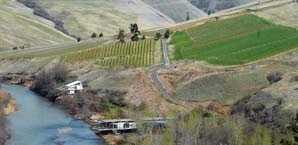 Colters Creek wines are grown in several steep fields along the Potlatch River just north of its confluence with the Clearwater River.