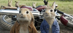 "This file image released by Columbia Pictures shows characters Benjamin, voiced by Colin Moody (left) and Peter Rabbit, voiced by James Corden in a scene from ""Peter Rabbit."" - COLUMBIA PICTURES/SONY VIA AP, FILR"