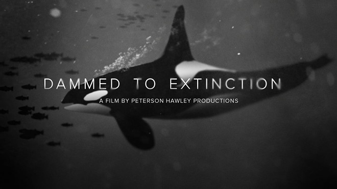 Dammed-to-Extinction-image.jpg
