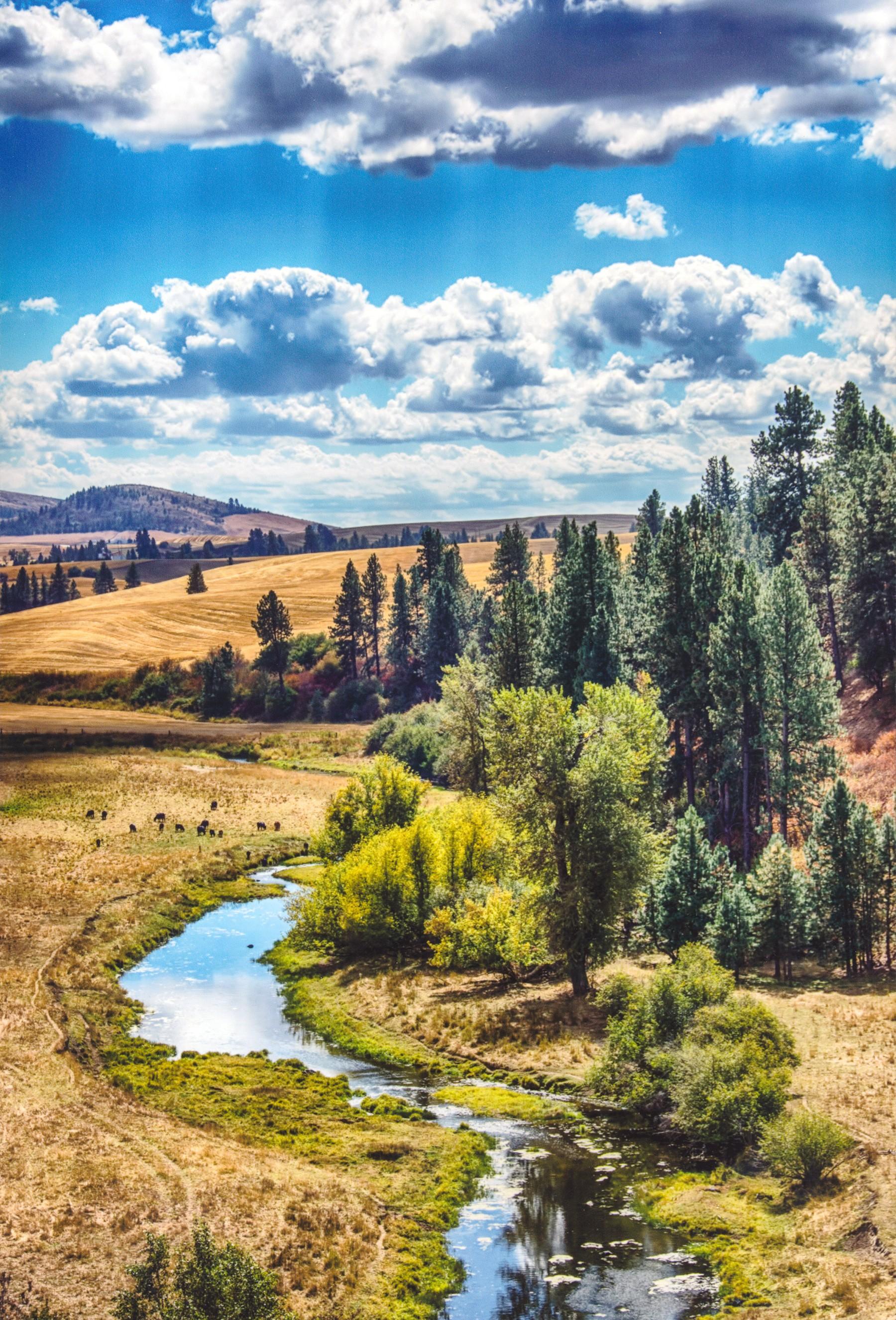 Chuck Browne - Lewiston, Idaho - 208-746-1506 - CHUCK BROWNE