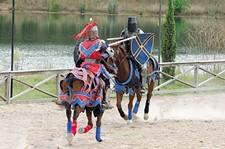 horses_joust.jpg