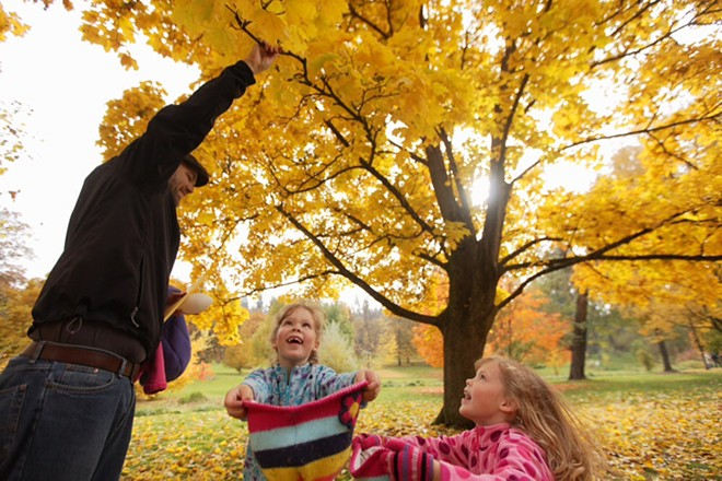 Andy Brown, left, attempts to shake leaves off a tree so that his twin 6-year-old daughters Alyssa, right, and Kaitlyn can catch them. - YOUNG KWAK