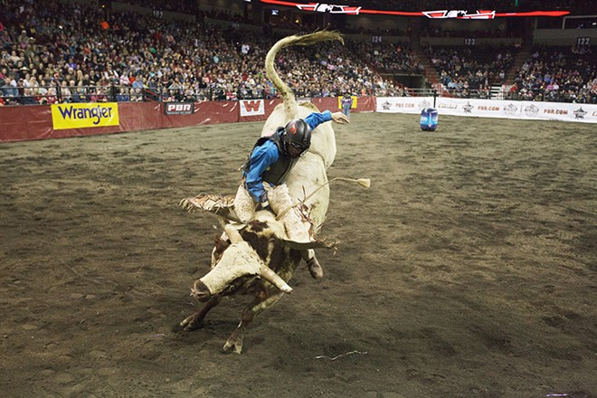 Bryan Carter, of Pendleton, Ore., rides 905 Hell No, during Flight 4, on Saturday. He rode 3.02 seconds before falling off the bull. - YOUNG KWAK
