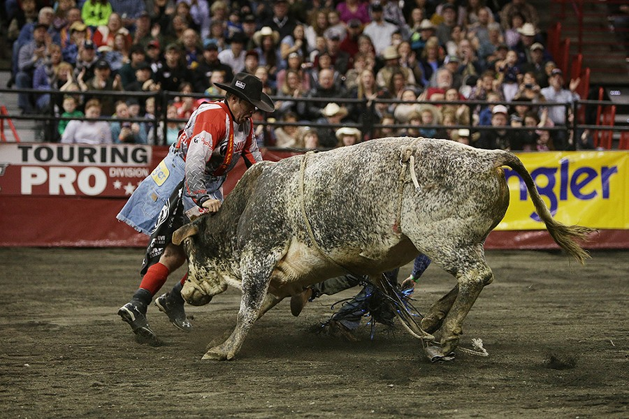 Bullfighter Marc Gill, left, of Laramie, Wyo., guides bull 45 Hell Yea after he knocked off rider Dakota Beck, back, of Moses Lake, Wash., during Flight 1. Beck scored 81 on this ride and won the overall event with a score of 179 from the previous night. - YOUNG KWAK