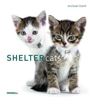 shelter_cats.jpg