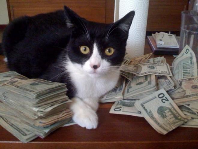 managefinances.jpg