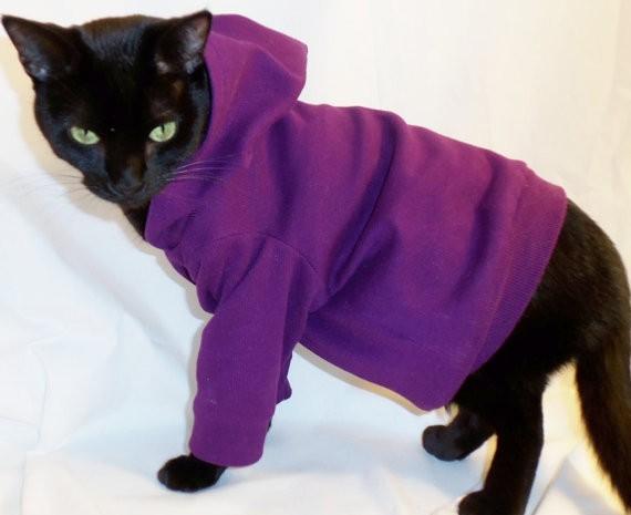 cathoodie.jpg