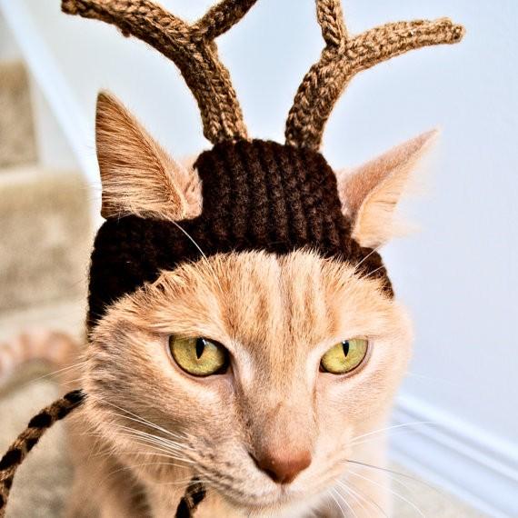 reindeer_hat.jpg