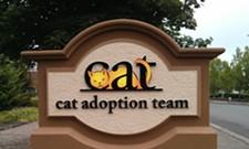 CAT FRIDAY: The cats of Portland, Oregon